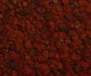 Annatto seed - whole